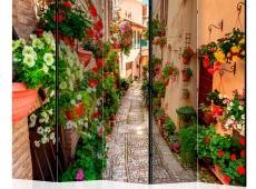Paraván - Alley in Umbria II [Room Dividers]